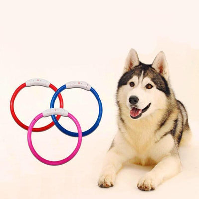 USB Rechargeable LED Dog Collar - Ohmyglad