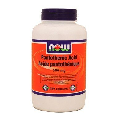 Pantothenic Acid 500mg 250 Caps