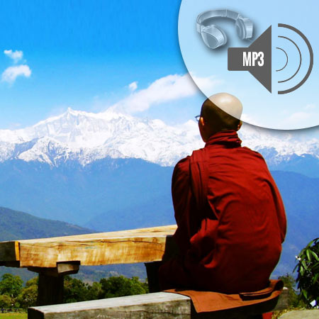 Guidet Meditation – Tilstede i Nuet (MP3)