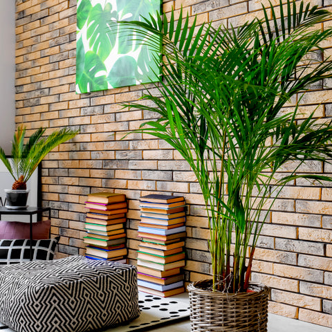 artificial decorative palm trees