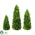 Silk Plants Direct Preserved Boxwood Topiary Cone Collection - Green - Pack of 1