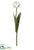 Parrot Tulip Spray - White - Pack of 12