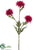 Aster Mum Spray - Fuchsia - Pack of 12