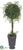 Angel Vine Topiary Ball - Green - Pack of 2
