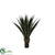 Outdoor Giant Agave Plant - Green/Yellow - Pack of 2