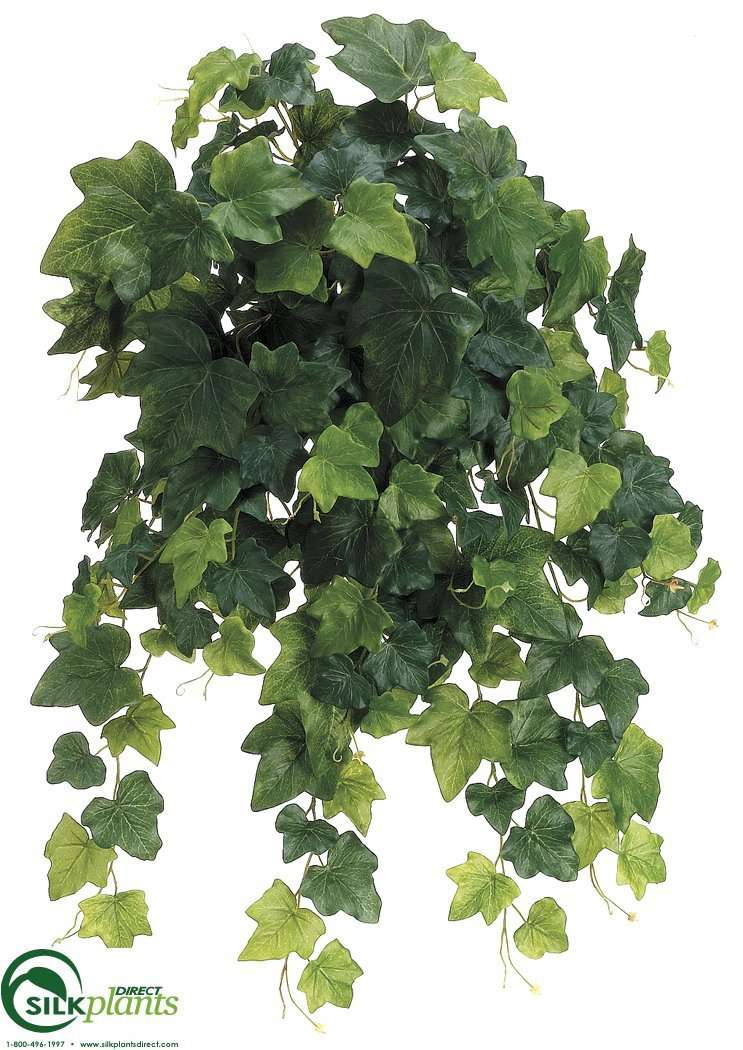 Silk Plants Direct English Ivy Vine Hanging Plant - Green - Pack of 6
