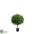 Outdoor Tea Leaf Topiary Ball - Green - Pack of 2