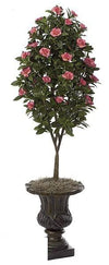 Gardenia Topiary - Beauty - Pack of 1