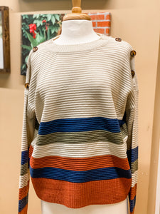 Button Trim Stripe ColorBlock Sweater