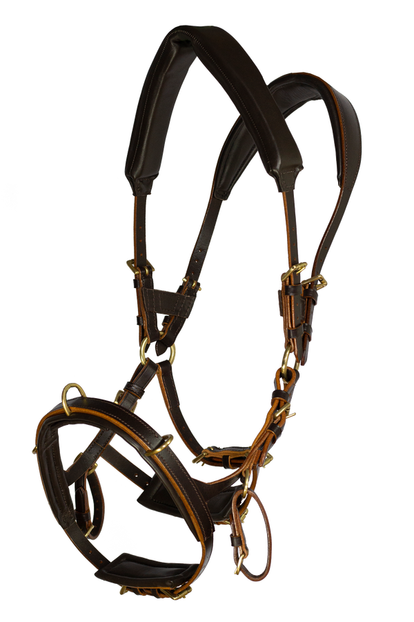 NeXaver® LEATHER LUNGING BRIDLE