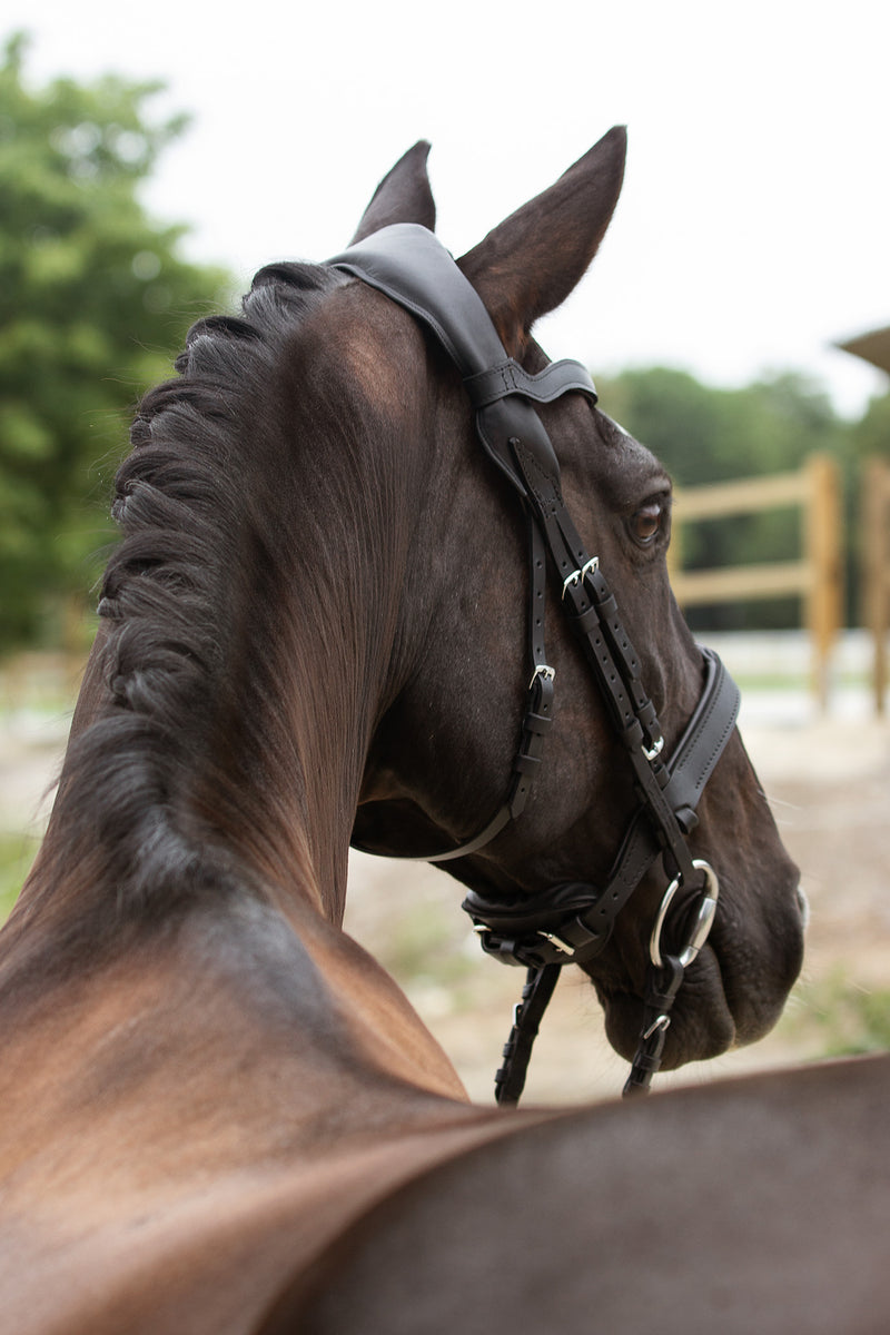 NEXAVER® SMART LEATHER SNAFFLE BRIDLE