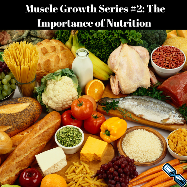 Muscle Growth Series #2: The Importance of Nutrition