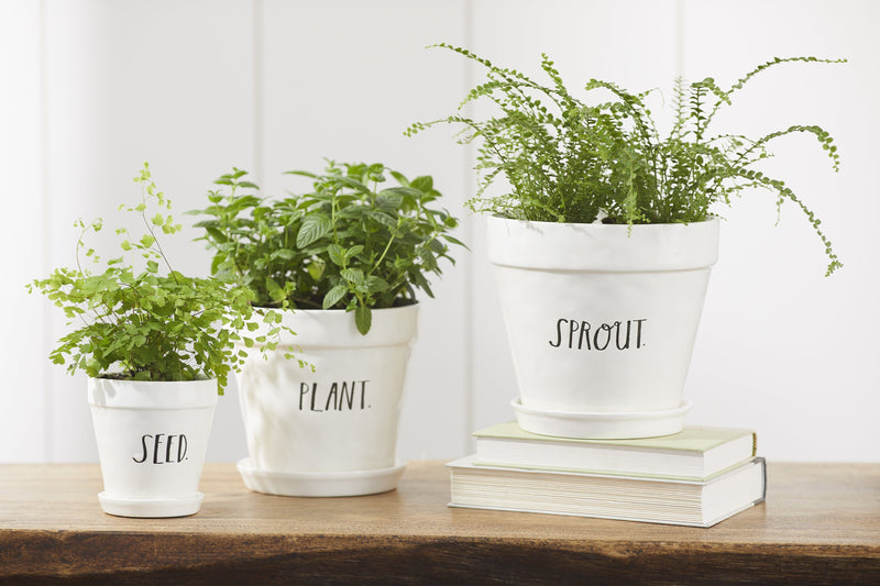 Stem Print SPROUT Planter, Large