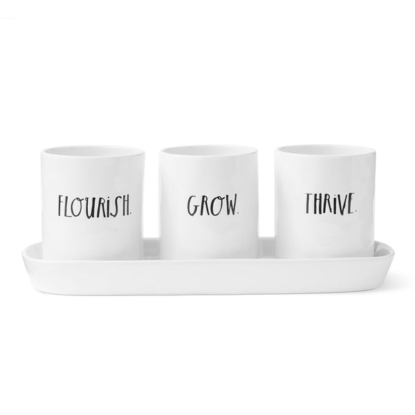 Stem Print Three-Bulb Planter Set with Tray
