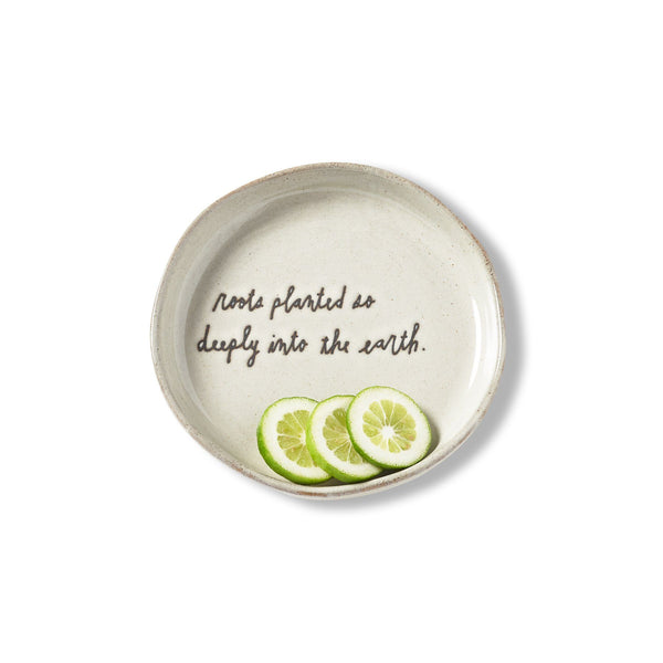 Sentiment Crudo Bowl, Set of 4