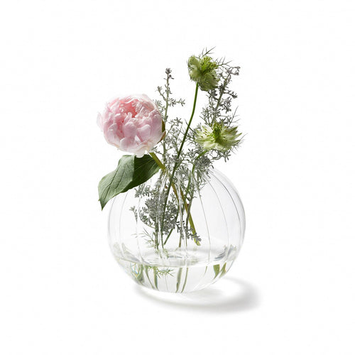Round Glass Transparent Vase Planter Home Décor