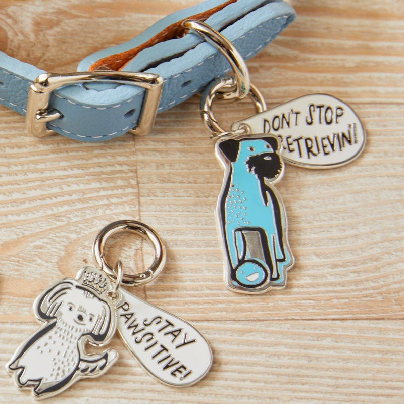 Pawsitively Charmed Pet Tags, Set of 2