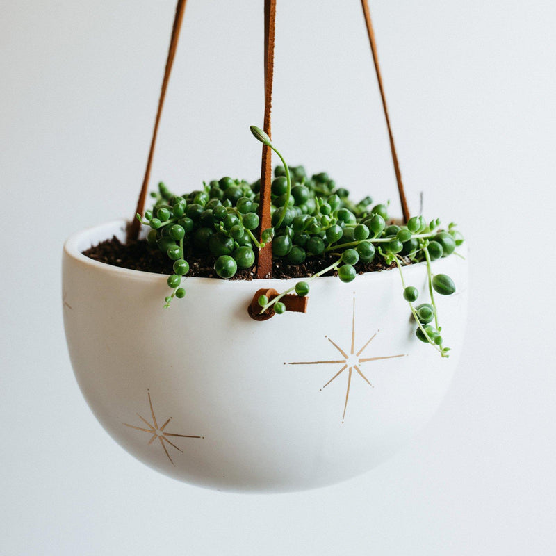 Palm Desert Hanging Planter in White