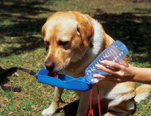 Foldable Dog Water Bottle
