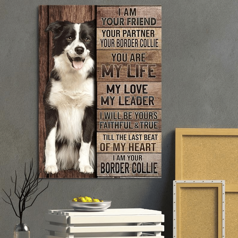 I Am Your Friend Your Partner Your Border Collie Poster