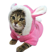 Bunny Cat Hoodie - Kawaii Kitty, The cutest Cat themed Gifts for cat lovers