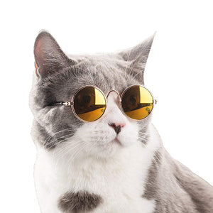 Cool Cat Sunglasses - Kawaii Kitty, The cutest Cat themed Gifts for cat lovers