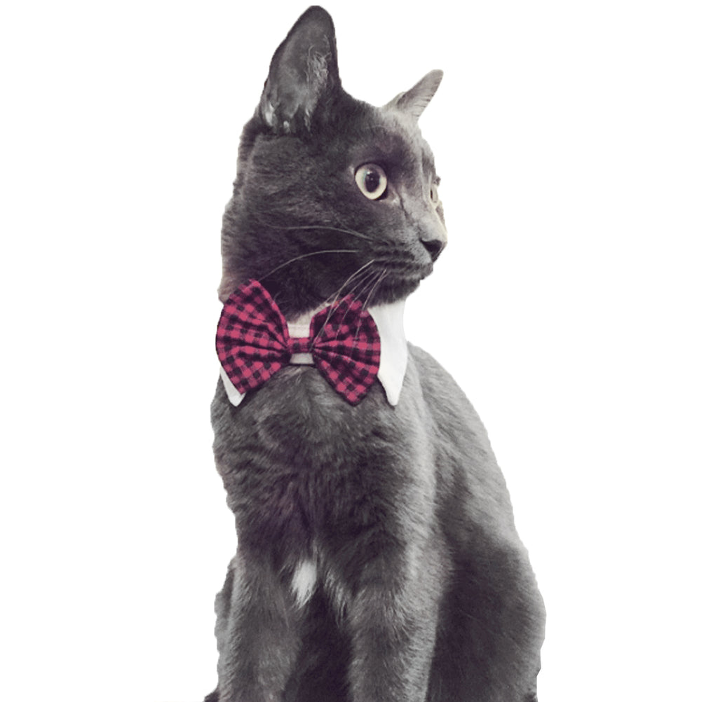 Cat Bow Tie - Kawaii Kitty, The cutest Cat themed Gifts for cat lovers