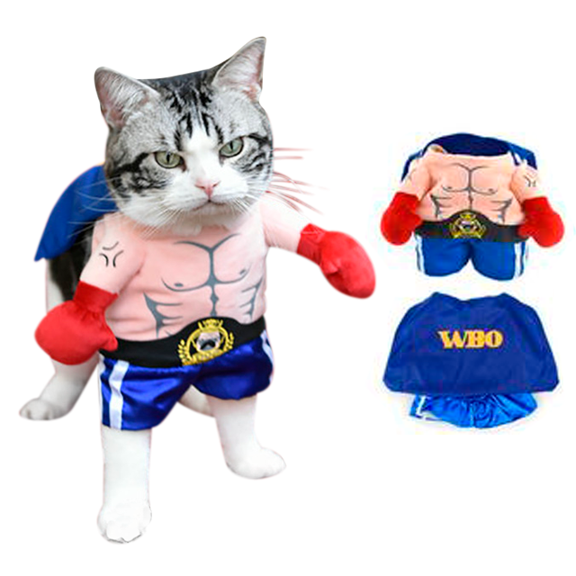 Boxer Cat Costume - Kawaii Kitty, The cutest Cat themed Gifts for cat lovers