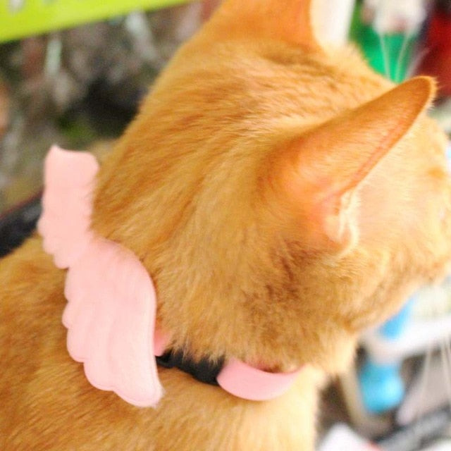 Cat Angel Wings Collar - Kawaii Kitty, The cutest Cat themed Gifts for cat lovers