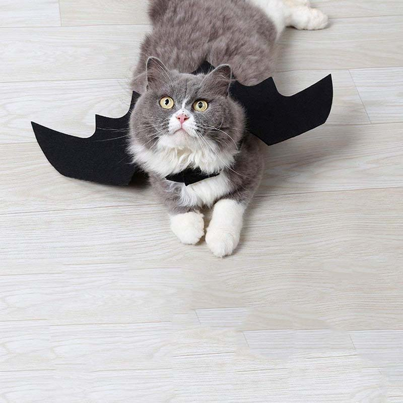 Vampire Cat Wings - Kawaii Kitty, The cutest Cat themed Gifts for cat lovers