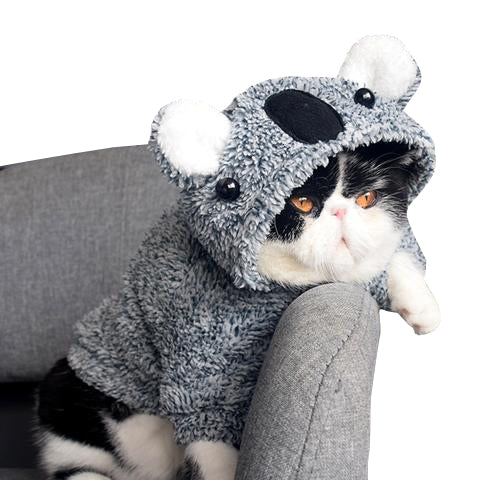 Koala Cat Hoodie - Kawaii Kitty, The cutest Cat themed Gifts for cat lovers