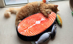 Salmon Fillet Pillow - Kawaii Kitty, The cutest Cat themed Gifts for cat lovers