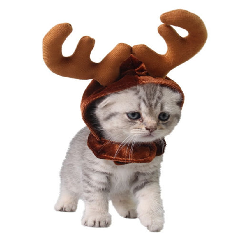 Reindeer Cat Hat - Kawaii Kitty, The cutest Cat themed Gifts for cat lovers