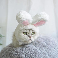 Bunny Cat Hat - Kawaii Kitty, The cutest Cat themed Gifts for cat lovers