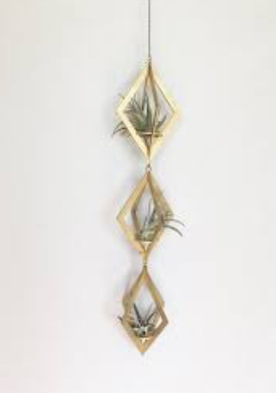 Gold Air Plant Trio Hanger