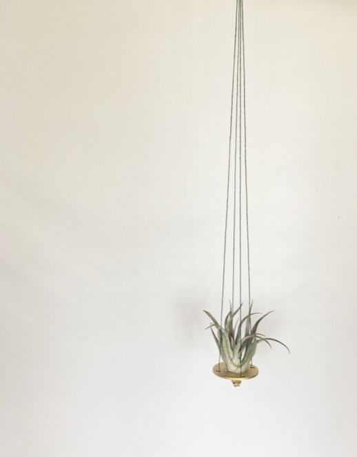 Mini Air Plant Hanger