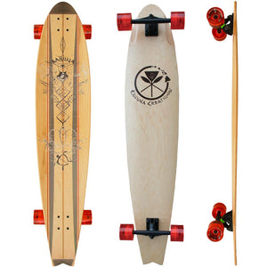 Beach board long board for Street SUP, land paddling, New Zealand