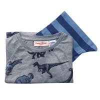 Kids Long Sleeve Raglan T-shirt and Trackies Pyjama Set - Dinosaurs