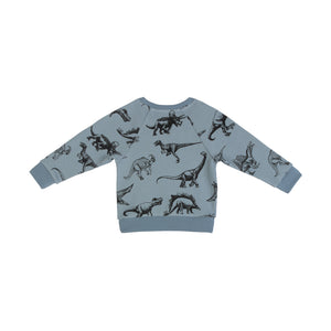 Fleece Sweater - Dinosaurs