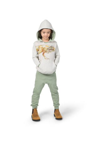 Hooded Raglan Pullover - Behind You