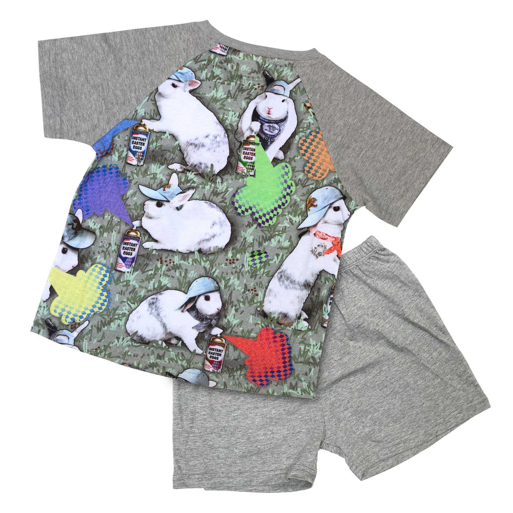Short Sleeve Raglan Tee and Shorts Lounge Wear Set - Instant Easter