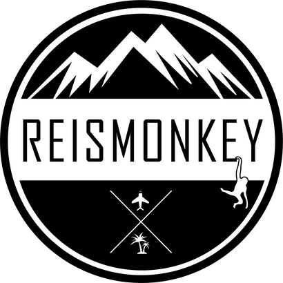 Reismonkey Coupons and Promo Code