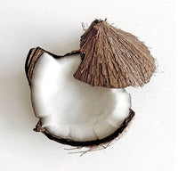 Coconut shell image