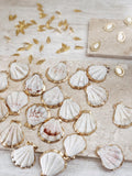 Adriatic | White seashell Earrings