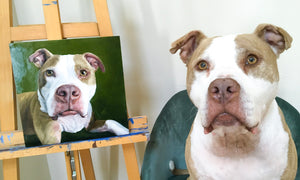 pit bull dog posing fo his portrait with painting