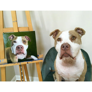 pittbull dog sitting for his portrait pittbull oil painting