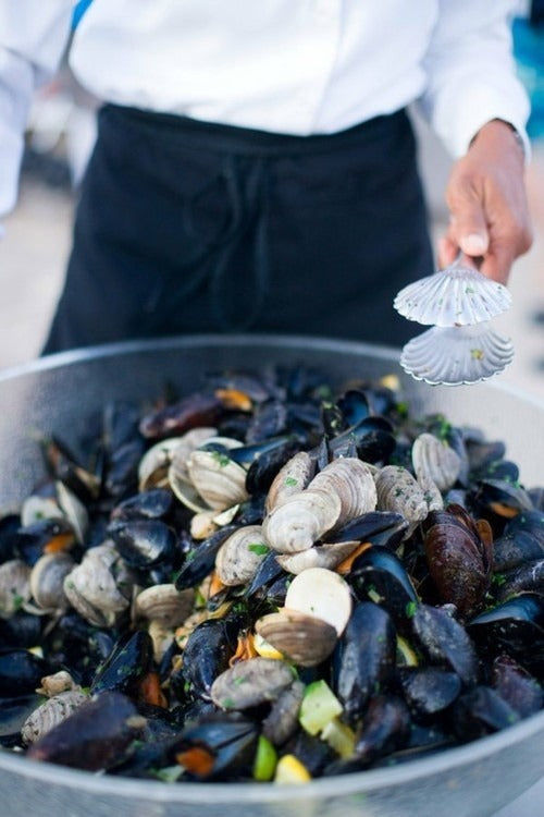 mussels and microplastics. How our oceans are feeding our food back to us. Plastic free living is essentialo