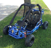 New Youth - TIKING 110GK  - Kids Go Kart - CA Carb Approved - Free Shipping