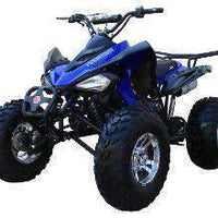 New Adult 150cc Sport - Coolster 3150cxc - 150cc ATV -CA Carb Approved - Free Shipping atvs Wholesale ATV Blue