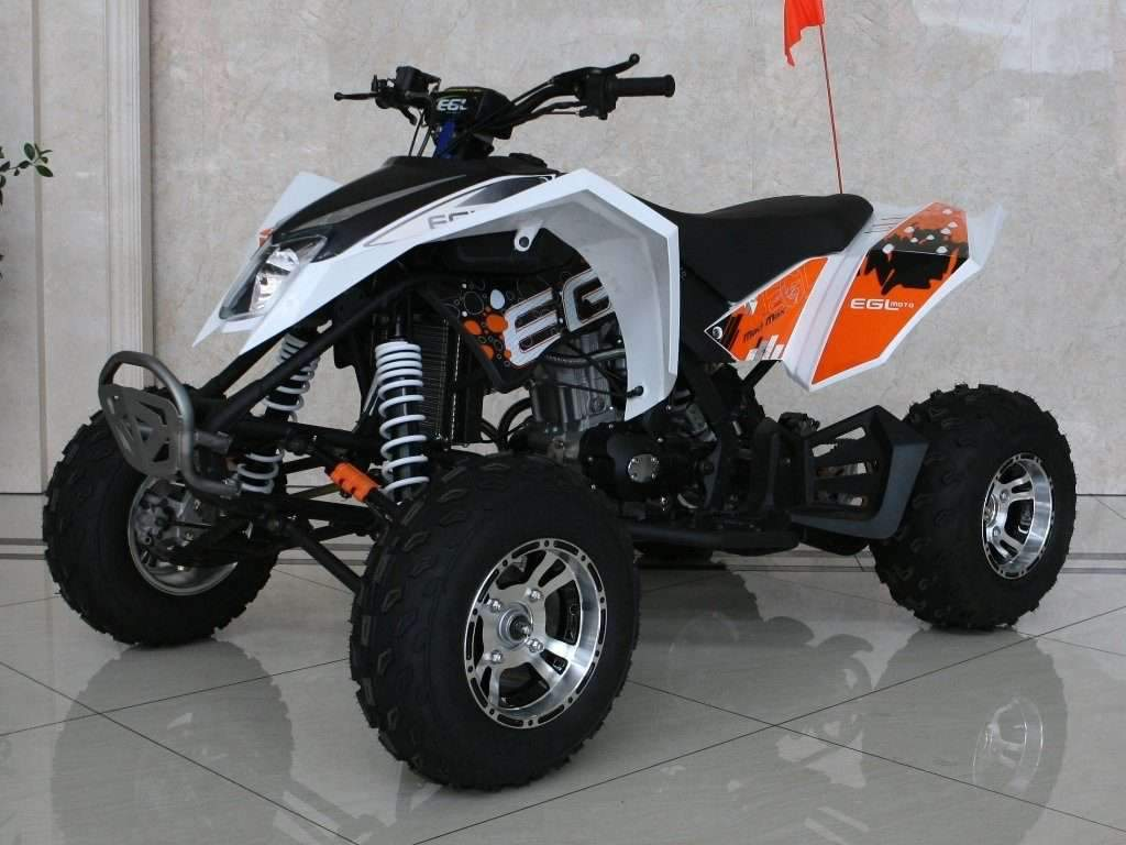 New Adult Sport 250cc - EGLMadMax 250 - AT V Four Wheeler w Reverse - Free Shipping atvs Wholesale ATV